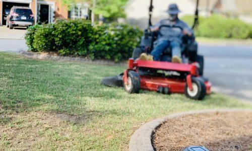 gardening-grass-moving-edging-yard-maintenance-PPJZ46K
